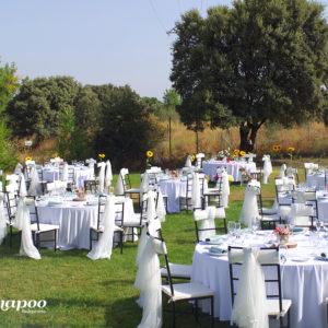 Zona exterior jardines para comuniones y eventos